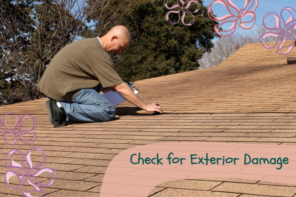 Check for Exterior Roof Damage